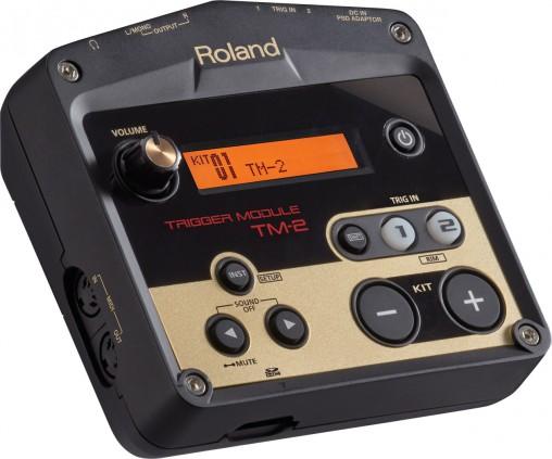 Roland TM-2 модуль для создания гибридной установки